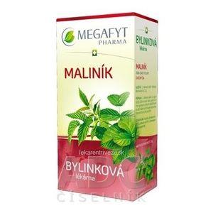 MEGAFYT Bylinková lekáreň OSTRUŽINA MALINOVÁ bylinný čaj 20x1, 5 g (30 g) vyobraziť