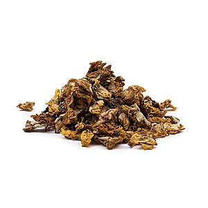 DIVOZEL KVET ( Verbascum densiflorum ) - bylina, 1000g vyobraziť