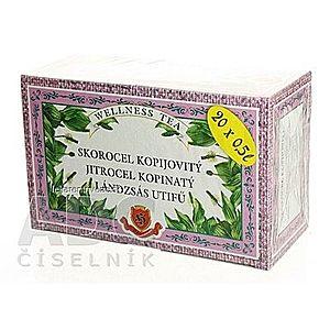 HERBEX SKOROCEL KOPIJOVITÝ bylinný čaj 20x3 g (60 g) vyobraziť