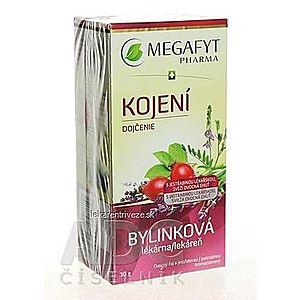 MEGAFYT Bylinková lekáreň DOJČENIE ovocný čaj 20x1, 5 g (30 g) vyobraziť